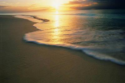 beaches_01.jpg