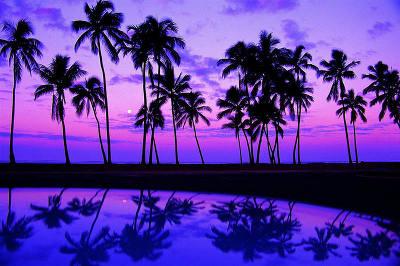 beaches_10.jpg