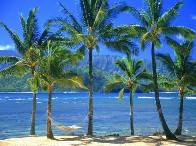 beaches_17.jpg