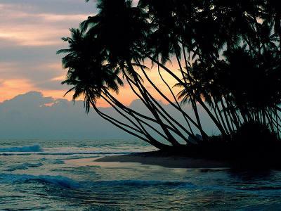 beaches_35.jpg