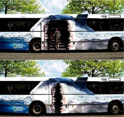 bus_ad_shark.jpg